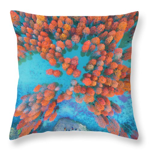 Tranquility Throw Pillow featuring the photograph Aerial Drone View With Fir Tree Fall by Yaorusheng