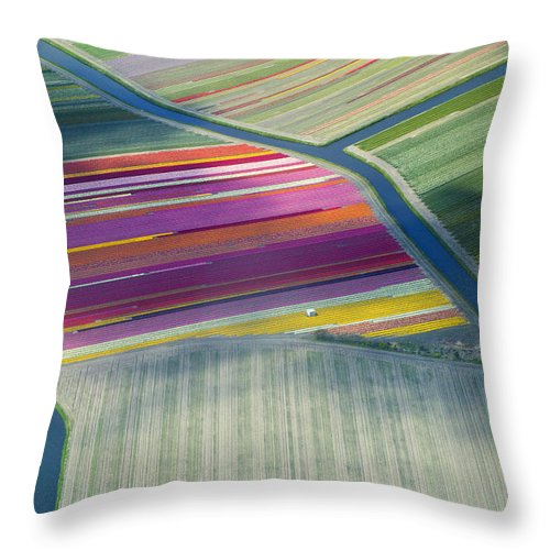 Curve Throw Pillow featuring the photograph Aerial View Of Flower Fields In Spring by Frans Sellies