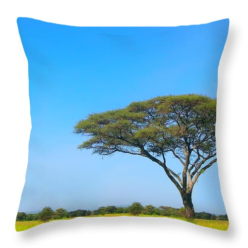 Africa Throw Pillow featuring the photograph Africa by Sebastian Musial