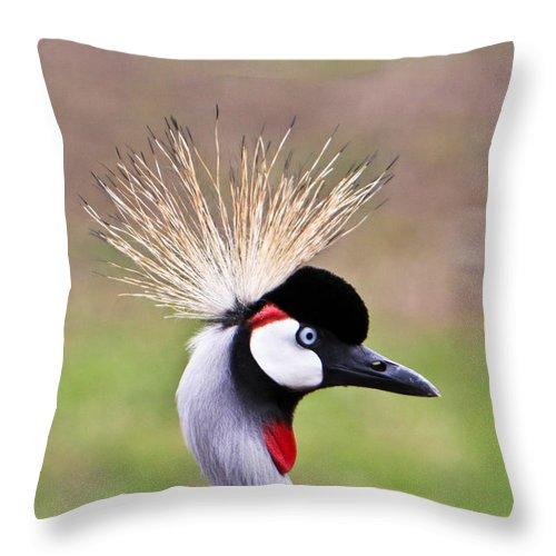 Golden Throw Pillow featuring the photograph African Crowned Crane Portrait by Douglas Barnett