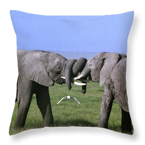 Africa Throw Pillow featuring the photograph African Elephant Greeting Endangered Species Tanzania by Dave Welling