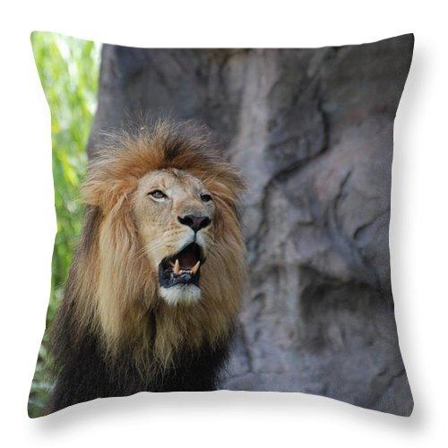 Lion Throw Pillow featuring the photograph African Lion Roar by DejaVu Designs