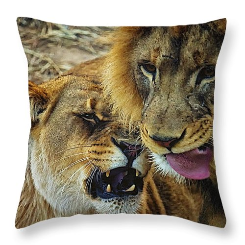 Lions Throw Pillow featuring the photograph African Lions 7 by Linda Tiepelman