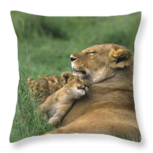 Africa Throw Pillow featuring the photograph African Lions Mother And Cubs Tanzania by Dave Welling