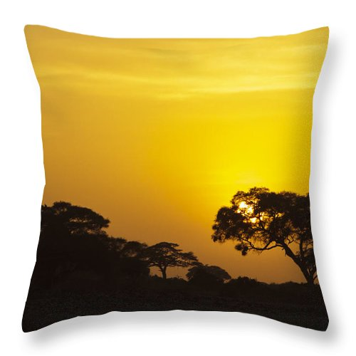 Kenya Throw Pillow featuring the photograph African Sunset by PiperAnne Worcester