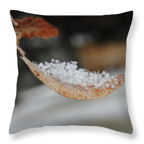Snow Throw Pillow featuring the photograph After Snowfall by Nathan Kelly