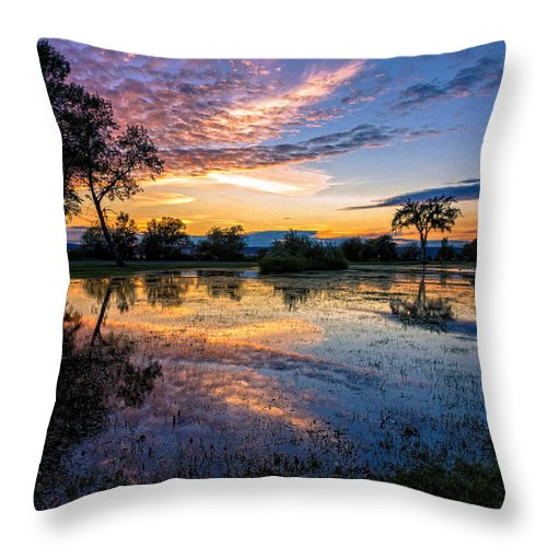 Rain Throw Pillow featuring the photograph After The Rains by Mary Amerman