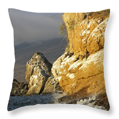Albemarle Throw Pillow featuring the photograph Afternoon Light On Isabella Island by Claudio Bacinello