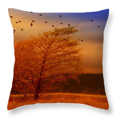 Landscape Throw Pillow featuring the photograph Against The Wind by Holly Kempe