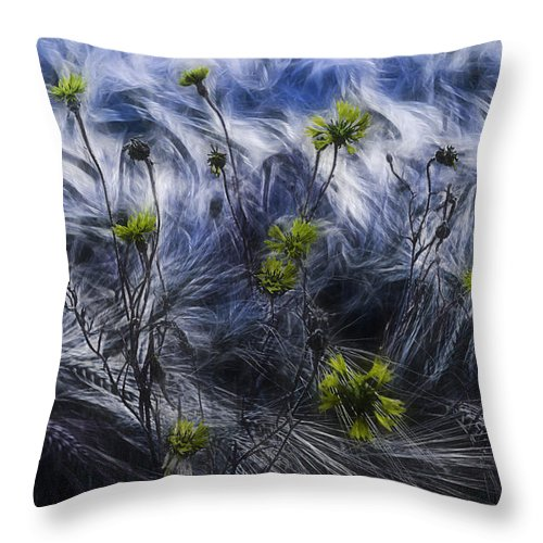 Cornflowers Throw Pillow featuring the photograph Against The Wind by Joachim G Pinkawa