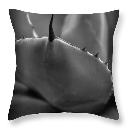 Plant Throw Pillow featuring the photograph Agave Monochrome by Nathan Abbott