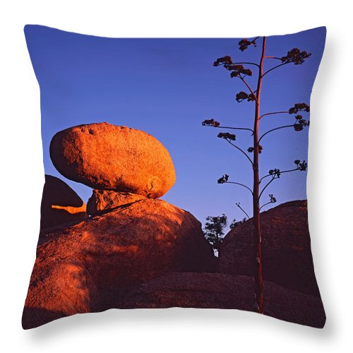 Arizona Throw Pillow featuring the photograph Agave Stalk And Boulder by Tom Daniel