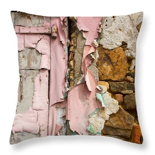 Grunge Throw Pillow featuring the photograph Age Reveal by Jared Shomo
