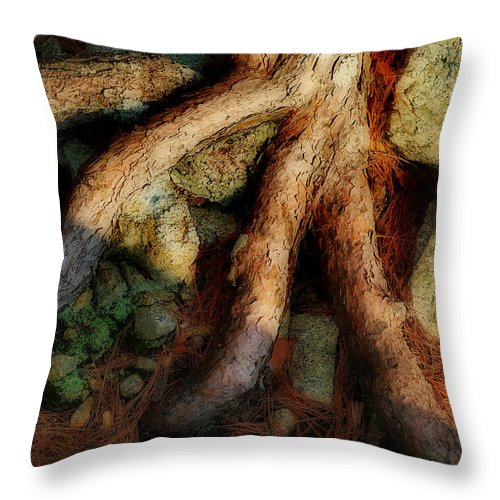 Nature Throw Pillow featuring the photograph AGE by Skip Willits