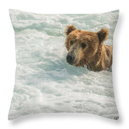Alaska Throw Pillow featuring the photograph Ahh Whirlpool Time by Joan Wallner