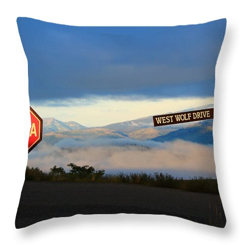 Jackson Hole Throw Pillow featuring the photograph Aint No Stoppin by Catie Canetti
