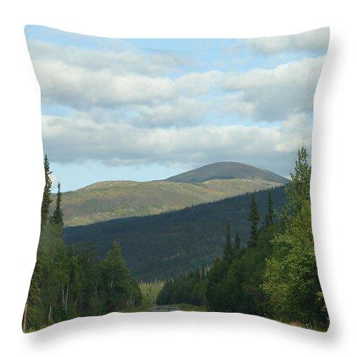 Alaska Throw Pillow featuring the photograph Alaska 14 by Lew Davis