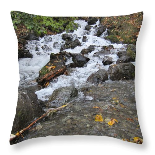 Waterfall Throw Pillow featuring the photograph Alaskan Waterfall by Richard Booth