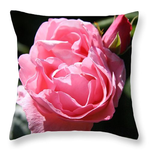Rose Throw Pillow featuring the photograph All Shades Of Pink by Christiane Schulze Art And Photography