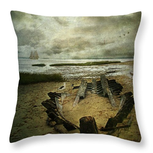 Seascape Throw Pillow featuring the photograph All That Remains by Lianne Schneider