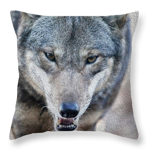Wolf Throw Pillow featuring the photograph All Wolf by Karol Livote