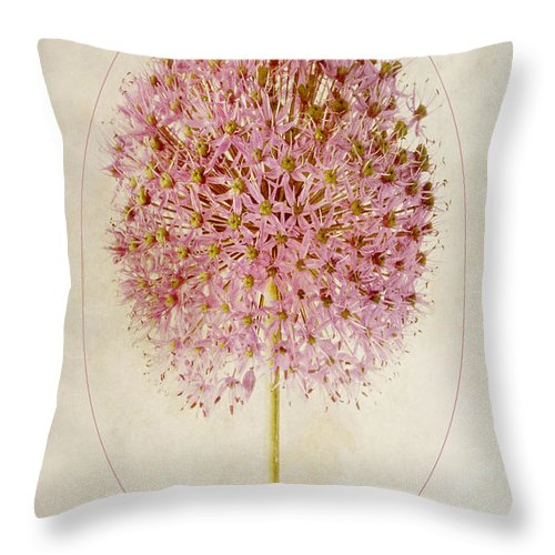Sepia Allium Throw Pillow featuring the photograph Allium Pink Jewel by John Edwards