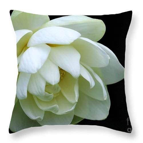 Macro Throw Pillow featuring the photograph Alluring Lotus by Sabrina L Ryan