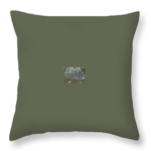 Landscape Throw Pillow featuring the painting Almost by Sheila Mashaw