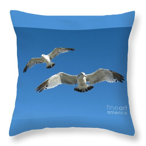 Seagulls Throw Pillow featuring the photograph Aloft by Chris Anderson
