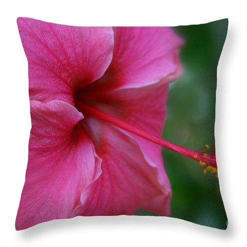 Aloha Throw Pillow featuring the digital art Aloha Aloalo Ulu Wehi Pink Tropical Hibiscus Wilipohaku Hawaii by Sharon Mau