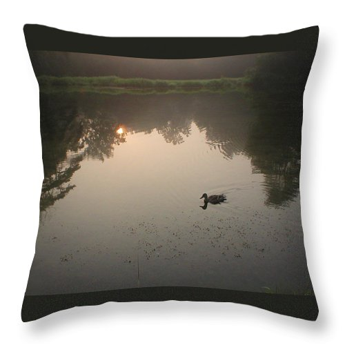Duck Throw Pillow featuring the photograph Alone Again Naturally by Patricia McCoy