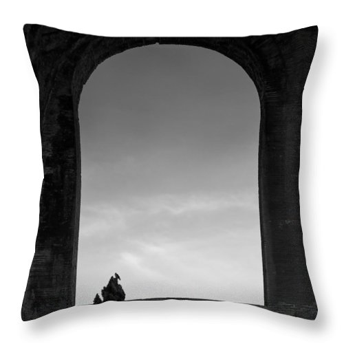 Bird Throw Pillow featuring the photograph Alone by Dave Bowman