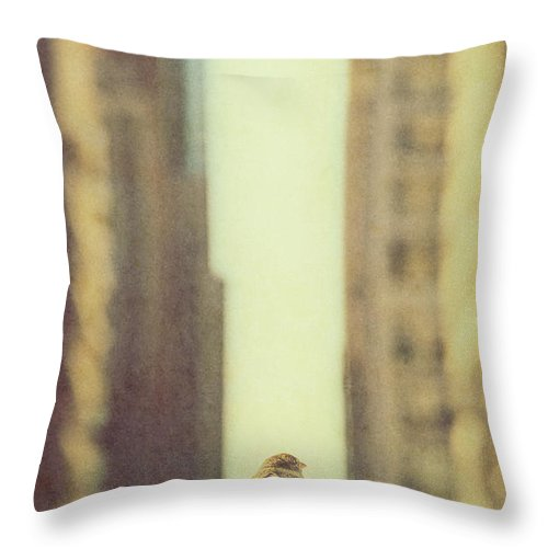 Sparrow Throw Pillow featuring the photograph Alone In A Big City by Margie Hurwich