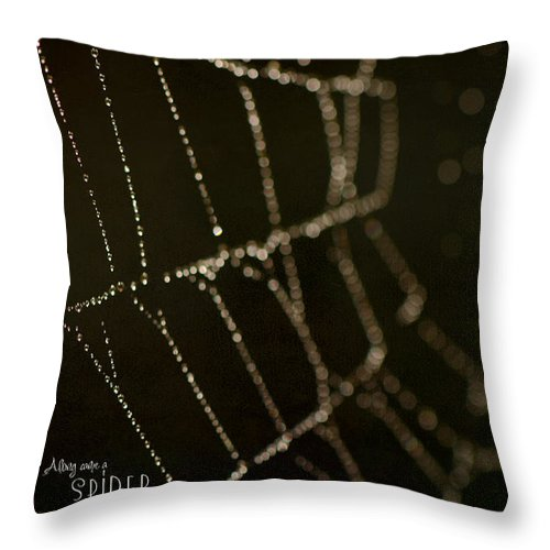 Spider Throw Pillow featuring the photograph Along Came A Spider by Lisa Knechtel