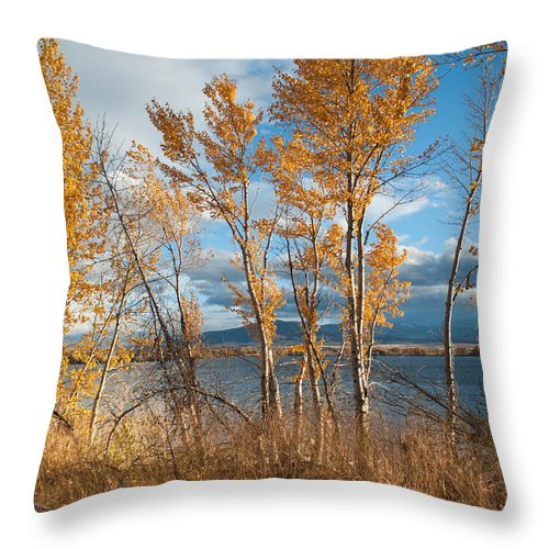 Throw Pillow featuring the photograph Along The Lake by Fran Riley