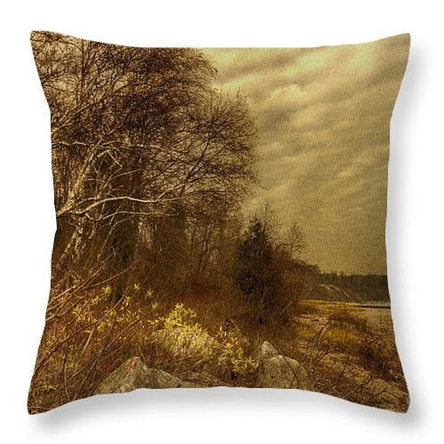 Water Throw Pillow featuring the photograph Along The Shore by Margie Hurwich