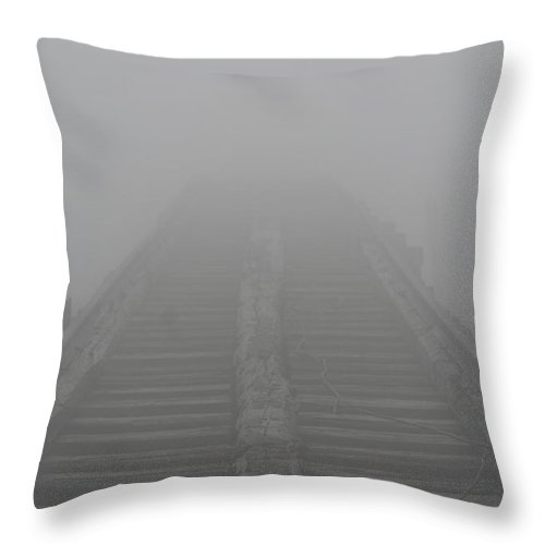 Railroad Tracks Throw Pillow featuring the photograph Along The Tracks by Jes Fritze