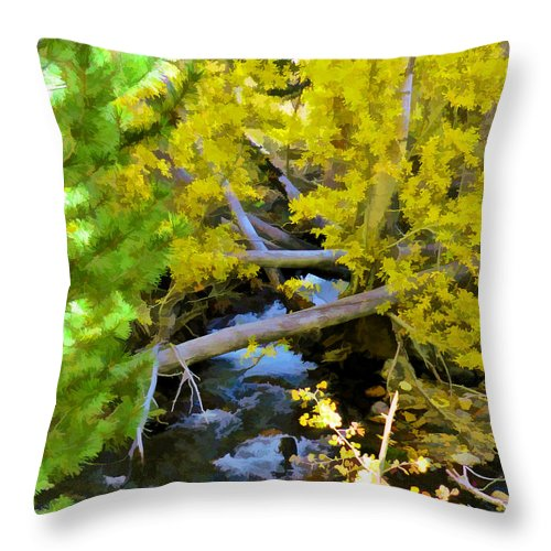 Stream Throw Pillow featuring the digital art Alpine Creek by L J Oakes