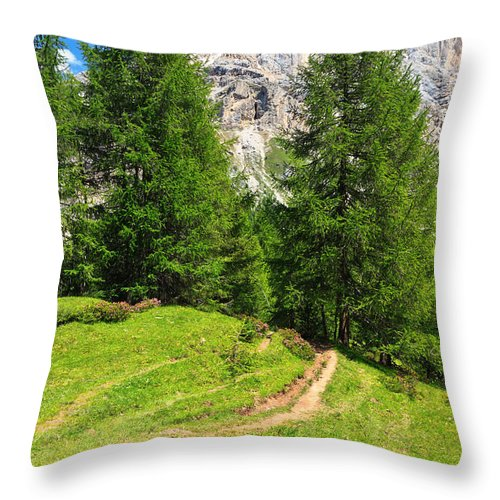 Landscape Throw Pillow featuring the photograph alpine path in Contrin Valley by Antonio Scarpi