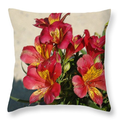 Alstroemeria Throw Pillow featuring the photograph Alstroemeria In Pastel by Suzanne Gaff