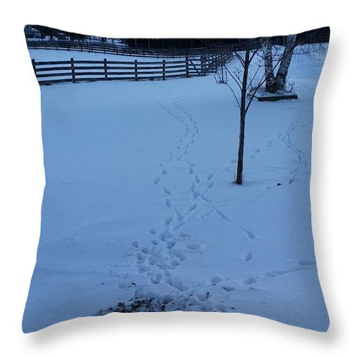 Nature Throw Pillow featuring the photograph Altercation by Mark Victors