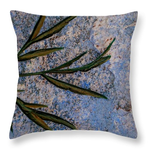 Leaf Throw Pillow featuring the photograph Altered State by Judy Wolinsky