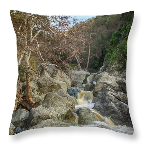 Sunol Ohlone Regional Wilderness Throw Pillow featuring the photograph Always In My Heart by Laurie Search