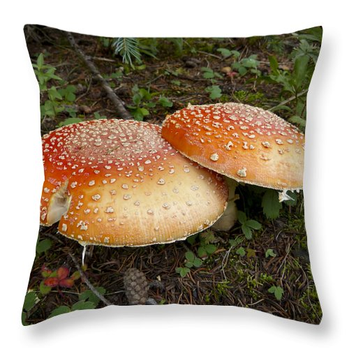 Mushroom Throw Pillow featuring the photograph Amanita Muscaria Love... by Christena Stephens