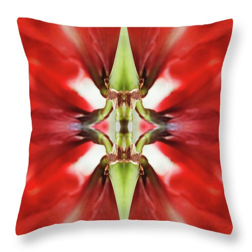 Tranquility Throw Pillow featuring the photograph Amaryllis Flower by Silvia Otte