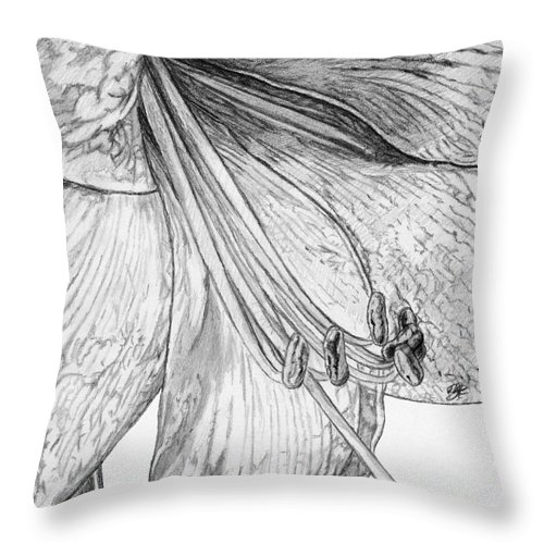 Mccombie Throw Pillow featuring the drawing Amaryllis by J McCombie