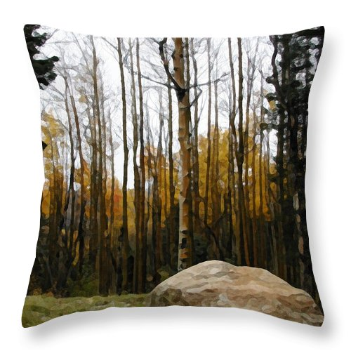 Trees Throw Pillow featuring the photograph Amazing Love by Jeanne A Martin