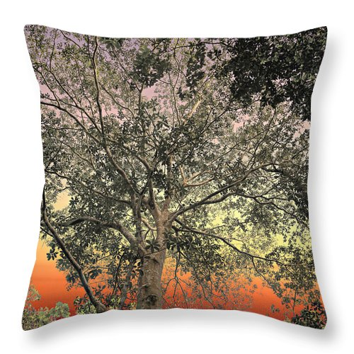 Backgrounds Throw Pillow featuring the photograph Glowing Sky by Maria Coulson