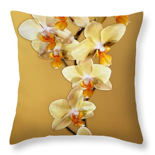 Phalaenopsis Throw Pillow featuring the photograph Amber Phalaenopsis by Kirk Ellison