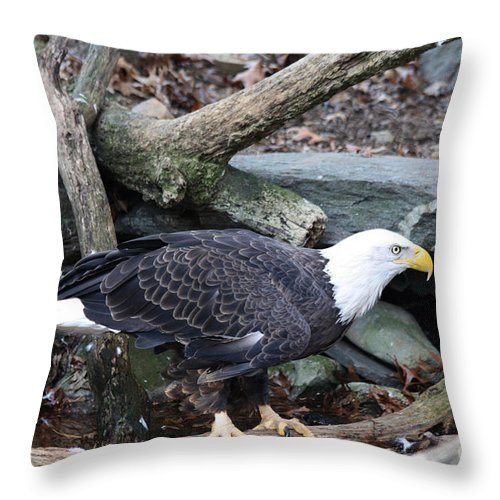 American Throw Pillow featuring the photograph America by John Telfer